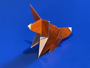 Fox (Raab)