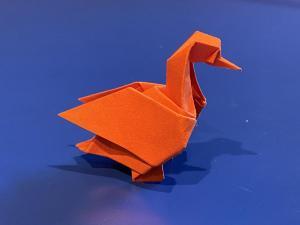 Duck (Raab)