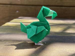 Dodo (Raab)
